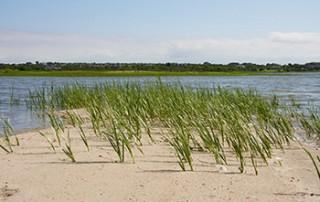 sandy shore motel block island vacations westerly ri beaches